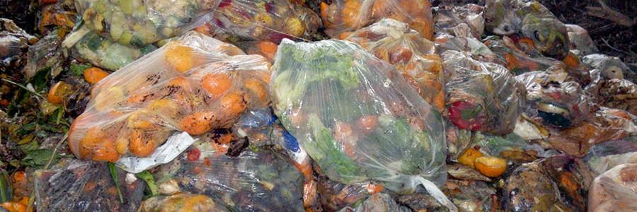 Reducir el despilfarro de comida