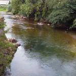 Un software español identifica el origen de la contaminación fecal en el agua