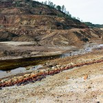 Nanopartículas para descontaminar agua y suelos