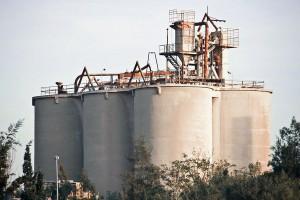 El uso de biomasa en la fabricación de cemento evitó la emisión de más de 800.000 toneladas de CO2