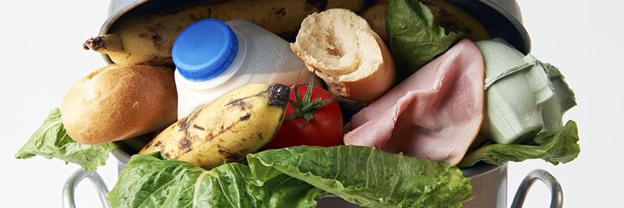 Proyecto Puente Alimentario contra el desperdicio de comida en Cataluña