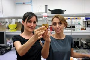 Consiguen abaratar la producción de biodiésel empleando ultrasonidos