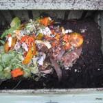 Compostaje doméstico, una herramienta sostenible para la gestión de biorresiduos
