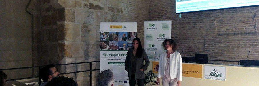 Nuevo encuentro sobre prevención y reciclaje de basuras marinas