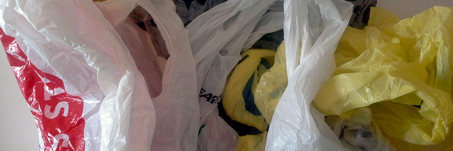 El Tribunal Constitucional avala que Navarra adelantara la prohibición de las bolsas de plástico