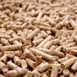 Una red europea de infraestructuras científicas para impulsar el sector de la biomasa