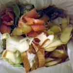 La Diputación de Pontevedra quiere aplicar el sistema de gestión de residuos orgánicos de Milán