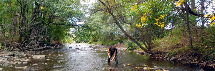 ¿Cómo perjudican las depuradoras el ecosistema de los ríos?