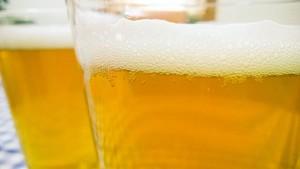 La UAL lidera un proyecto para valorizar los residuos de la cerveza