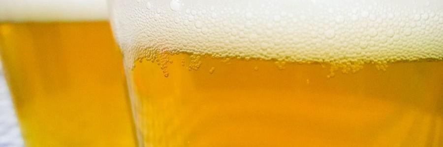 Nuevos bioproductos a partir de residuos de la cerveza