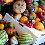 Nueva iniciativa de FAO contra el desperdicio de alimentos