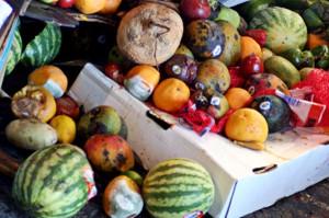 FAO lanza una nueva iniciativa contra el desperdicio de alimentos