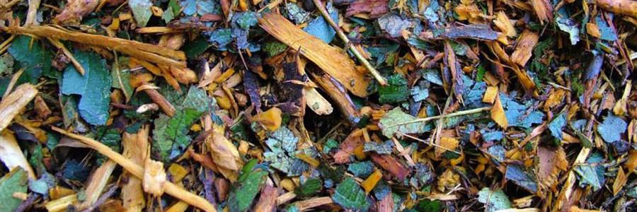 Obtienen nuevos productos de calidad para usos agronómicos a partir de restos de poda y jardinería