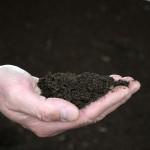 Los lodos de depuradoras y los residuos urbanos son seguros para fertilizar los suelos