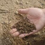 Sogama licita la construcción de una planta de compostaje por cuatro millones de euros