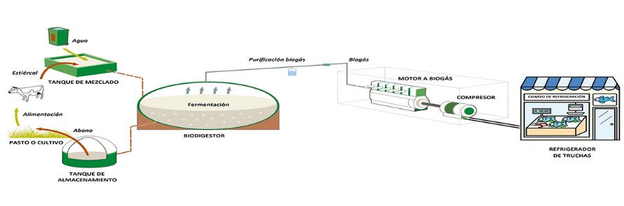 Sistema refrigerante a partir de biogás