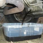 SIGAUS asegura que asumirá el sobrecoste de la recogida del aceite usado en España