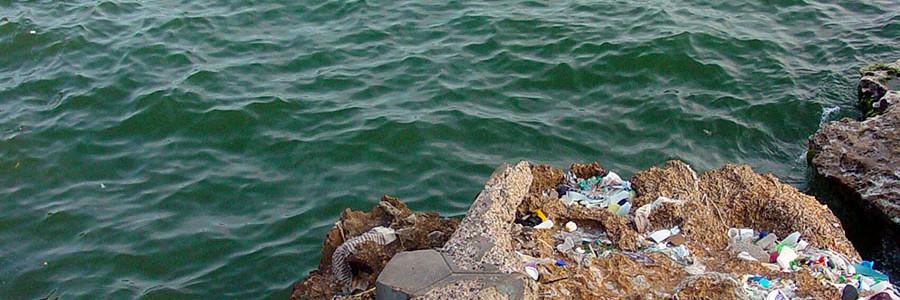 Nuevo acuerdo contra las basuras marinas