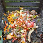Usar residuos como fertilizantes ahorraría el 30% de abonos importados por la UE