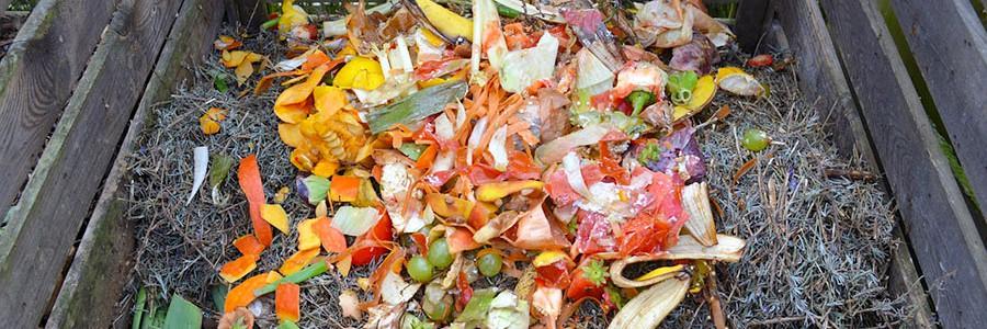 El Plan PIMA Residuos contará con una dotación económica de casi cinco millones de euros