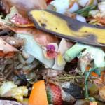URBIOFIN, proyecto para transformar residuos en nuevos productos biotecnológicos