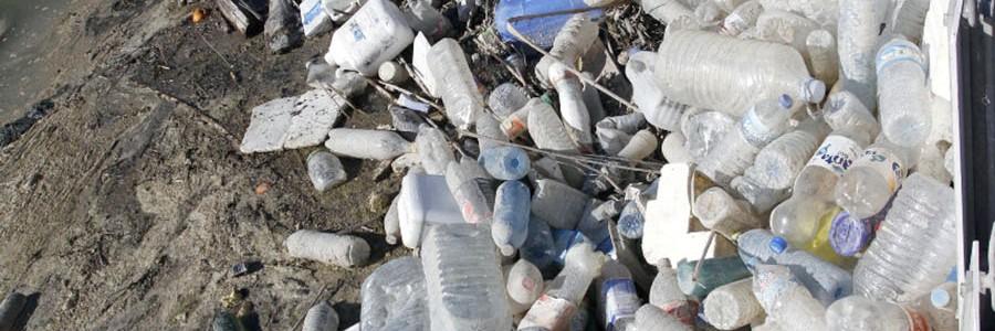 Recogen 300 kg de residuos de envases en hora y media en el río Segura