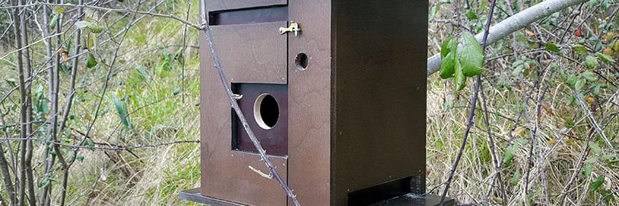 Reutilizan viejas máquinas de tabaco como nidos para pájaros