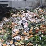 Una de cada tres toneladas de alimentos van a la basura en Colombia