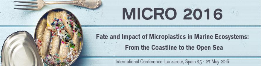 Lanzarote acoge la I Conferencia Internacional sobre el impacto de los microplásticos en el medio marino
