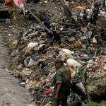 La ONU alerta sobre las muertes prematuras a causa de la degradación ambiental