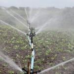 La UE lanza una iniciativa para establecer una legislación en materia de calidad de la reutilización del agua para el riego en agricultura y la recarga de acuíferos