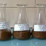 NEIKER-Tecnalia desarrolla una técnica para descontaminar suelos que combina el uso de nanopartículas y biorremediación