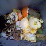Huesca ensaya la recogida selectiva y el compostaje de residuos orgánicos