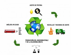 Diagrama Bioseville
