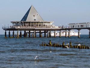 los vertidos de aguas depuradas hacen disminuir la producción de oxígeno en el medio marino