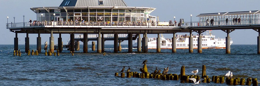 Los vertidos de aguas depuradas disminuyen el oxígeno marino