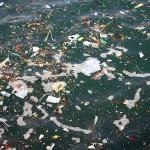 El proyecto LEMA retirará 100 toneladas de basuras marinas del Golfo de Bizkaia