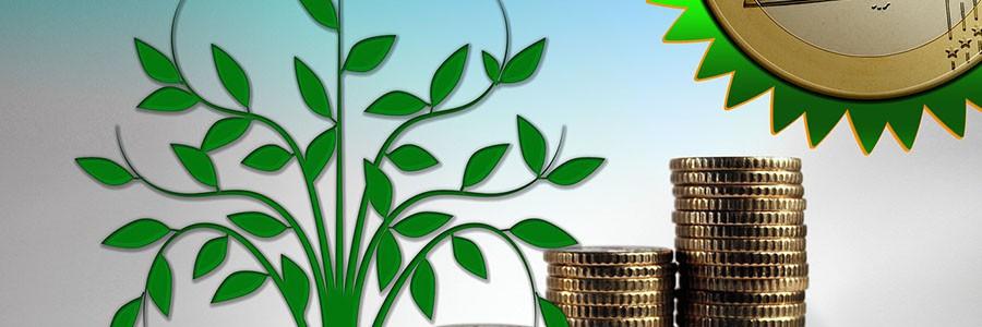 Los impuestos ambientales en el futuro sistema fiscal de la UE