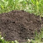 Los límites del compost: ¿calidad o cantidad?