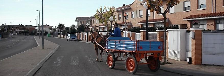 Un pueblo de Huesca prueba la recogida puerta a puerta de materia orgánica con carro de caballos