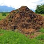 Investigadores argentinos desarrollan un sensor que optimiza la producción de compost