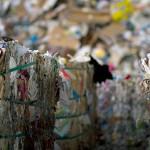 2016 será el tercer mejor año de la historia en recogida de papel para reciclar