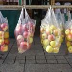 Puerto Rico prohibe las bolsas de plástico