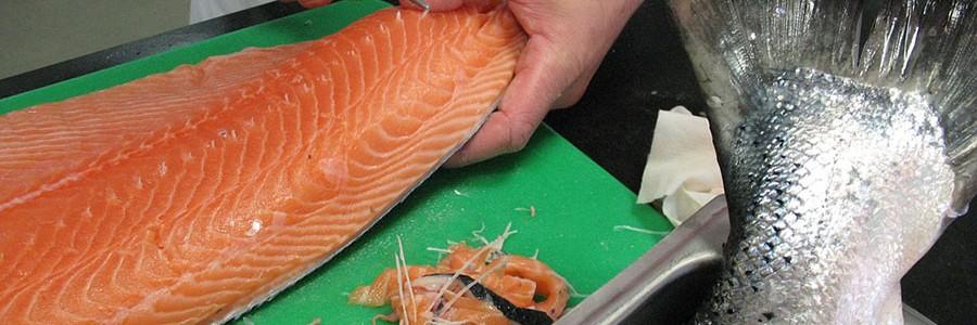 DAFIA: Nuevos materiales de alto valor a partir de residuos pesqueros y RSU