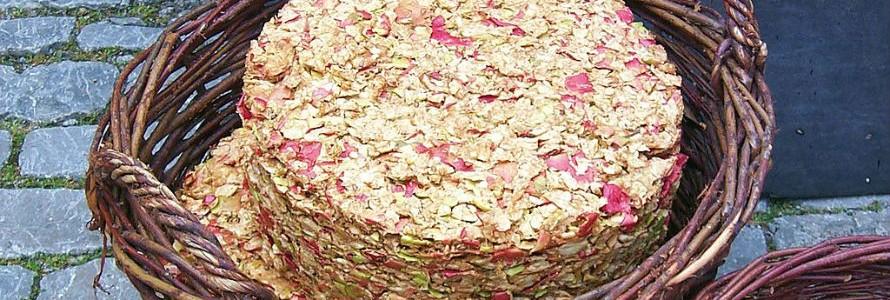 Residuos de manzana permiten regenerar hueso y cartílago