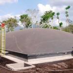 Una empresa mexicana obtiene electricidad a partir de residuos de industria cárnica