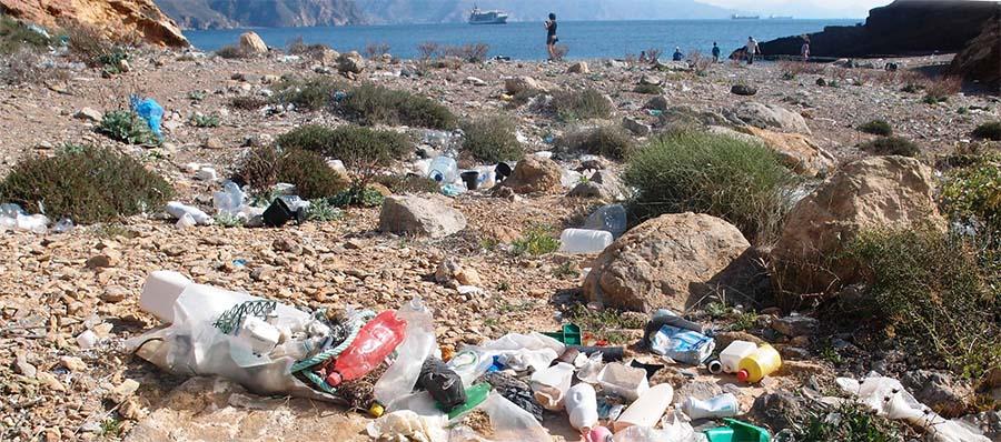 Un estudio de la Universidad de Deusto confirma que la reducción del uso de bolsas de plástico ha tenido impacto directo en las basuras marinas