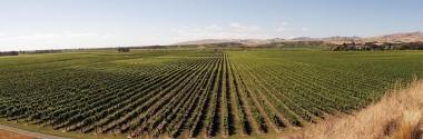 La economía circular llega a la agricultura y la ganadería