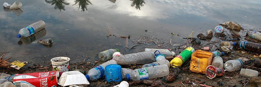 La lucha de la ONU por mantener los océanos limpios de plásticos