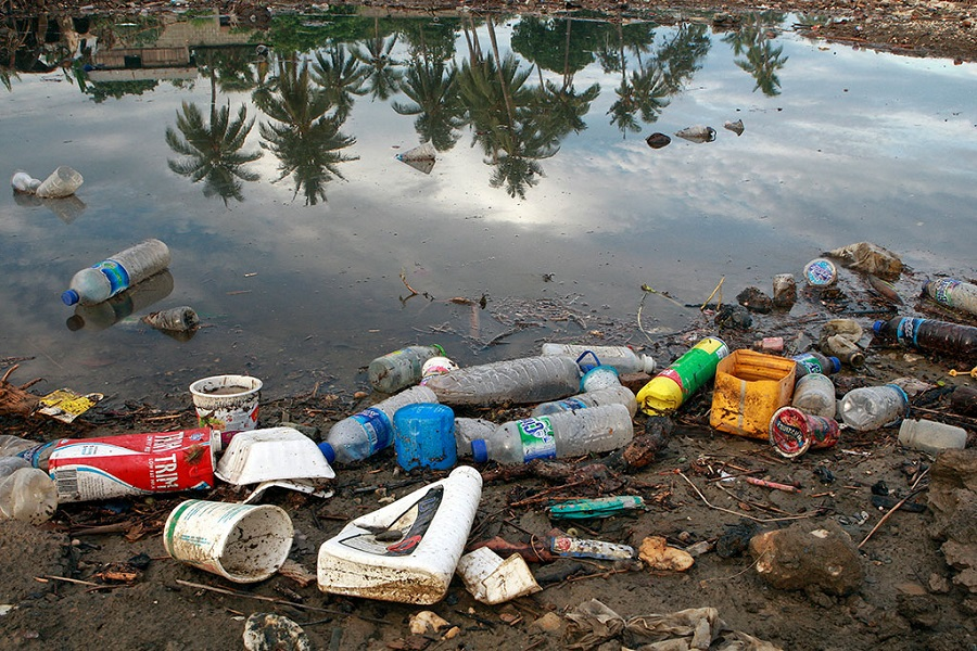 Los residuos de plástico están ya en todos los mares y océanos del planeta